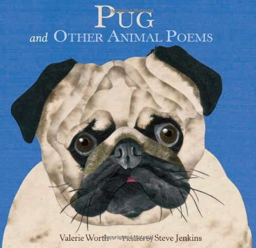 Amazon a pugs guide to dating for older 3